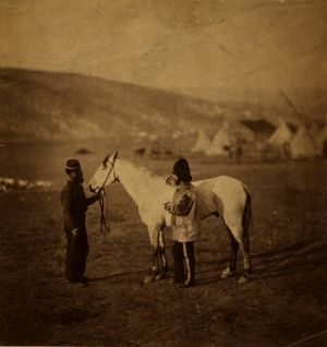 Colonel Clarke, Scots' Greys, with the horse wounded at Balaklava, Crimean War