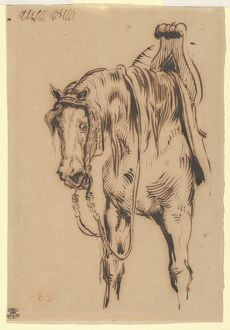 GA¶etz van Berlichingen's Horse, ca. 1820, Pen and brown ink on wove paper, Overall