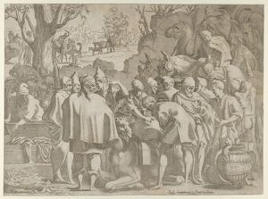 "Men Gathered Around a Camel, ca. 1540a€""56, Etching, Sheet (trimmed): 12 1/2 A— 17"