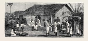 THE SLAVE TRADE ON THE EAST COAST OF AFRICA: RELEASED SLAVES ON THE UNIVERSITIES&#39